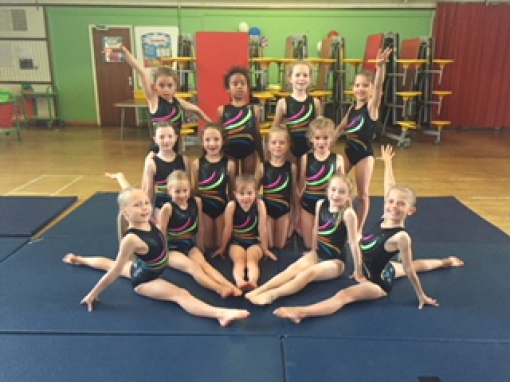 704c839f272f Sarah Hills and Emma Young started Spectrum Gymnastics Academy in May 2016  with a mere 17 gymnast from Bright Stars Gym Schools.